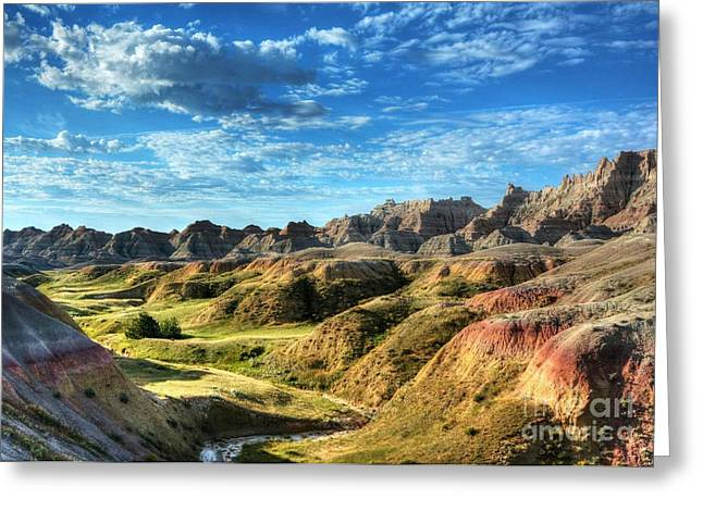 Green And Yellow Greeting Cards - Colors Of The Badlands Greeting Card by Mel Steinhauer
