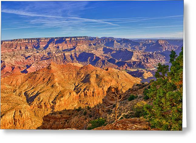 Grand Canyon Greeting Cards - Colors of the Canyon Greeting Card by Greg Norrell