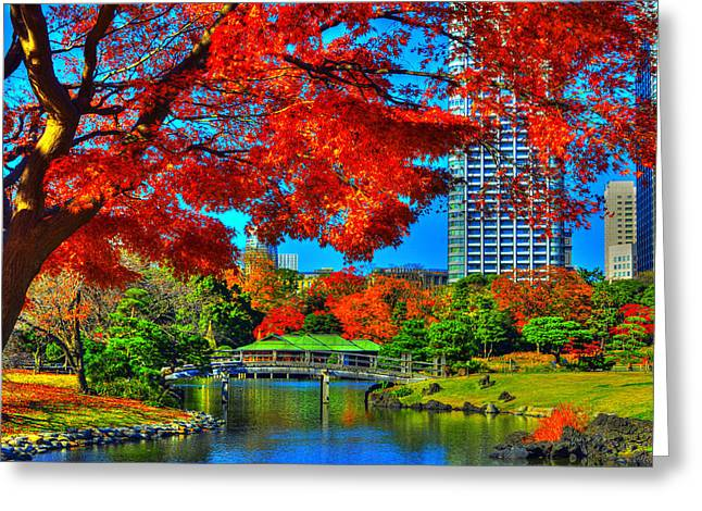 Fallen Leaf Greeting Cards - Colors of the city Greeting Card by Midori Chan