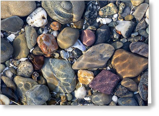 Beach Stones. Colorful Rocks Greeting Cards - Colors of The Coast Greeting Card by Andrew Pacheco