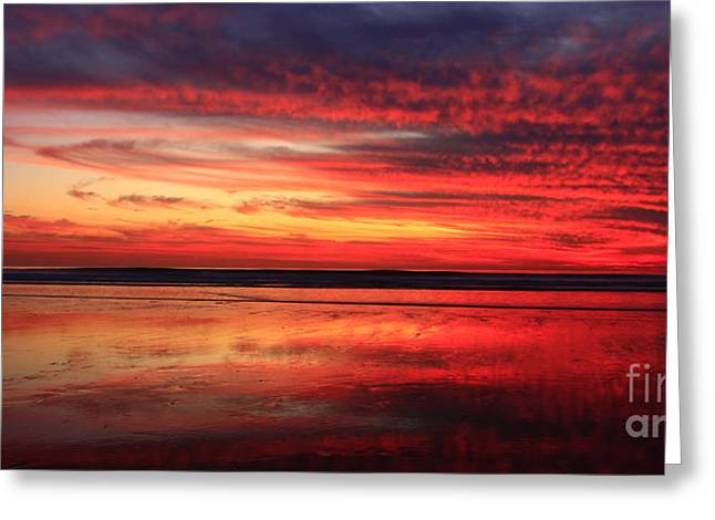 Pacific Ocean Prints Greeting Cards - Colors Of Twilight Greeting Card by John Tsumas
