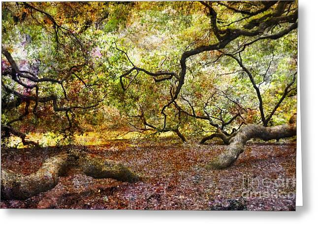 Angel Oak Photographs Greeting Cards - Colors Under The Tree Greeting Card by Kathleen Struckle