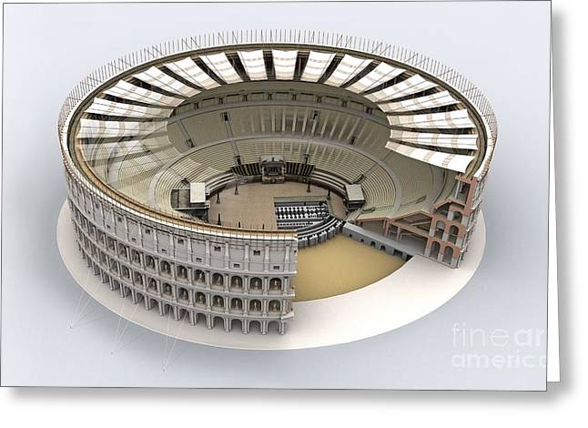 Domitian Greeting Cards - Colosseum In Rome, Artwork Greeting Card by Jose Antonio Pe??as