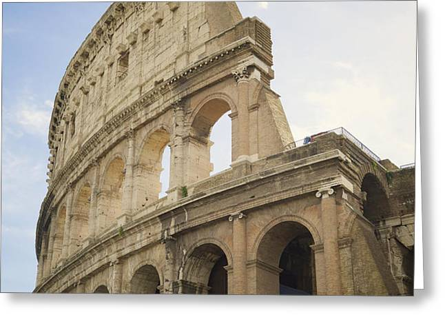 Colosseum Rome, Italy Greeting Card by Allyson Scott