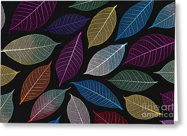 Coloured Greeting Cards - Coloured Leaf Skeleton Pattern Greeting Card by Tim Gainey