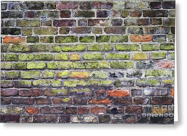 Alga Greeting Cards - Colourful London Bricks Greeting Card by Tim Gainey
