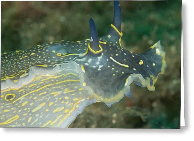 Marine Mollusc Digital Art Greeting Cards - Colourful Nudibranch Greeting Card by Roy Pedersen