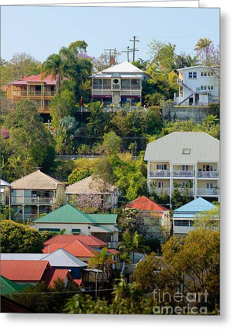 Colourful Queenslander Houses On A Steep Hillside  Greeting Card by David Hill