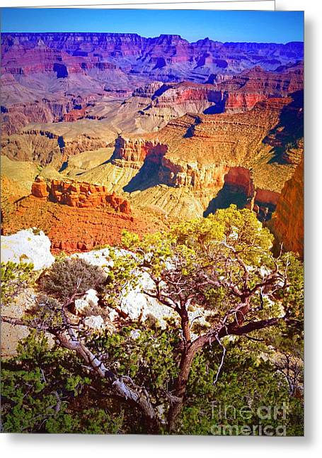 Layers Greeting Cards - Colours Within the Canyon Greeting Card by Tara Turner