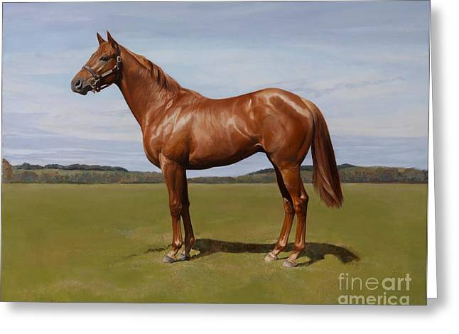 Equestrian Prints Greeting Cards - Colt Greeting Card by Emma Kennaway