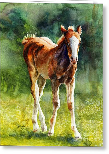 Green Pastures Greeting Cards - Colt in Green Pastures Greeting Card by Bonnie Rinier