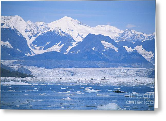 Bergy-bit Greeting Cards - Columbia Glacier Greeting Card by Mark Newman