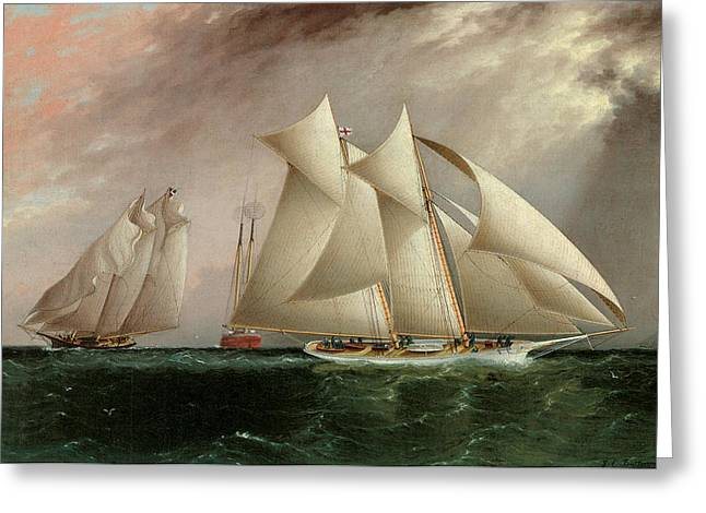 Sea Going Greeting Cards - Columbia Leading Dauntless in the Hurricane Cup Race Greeting Card by James E Buttersworth