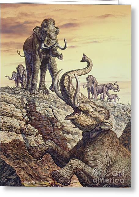 Columbian Mammoth Trapped In A Sinkhole Greeting Card by Mark Hallett