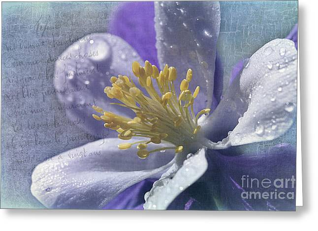 Cindi Ressler Greeting Cards - Columbine Greeting Card by Cindi Ressler