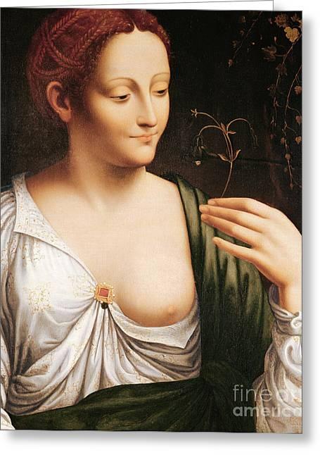 Dainty Greeting Cards - Columbine Greeting Card by Leonardo da Vinci