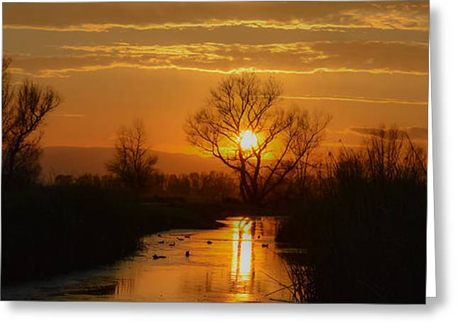 Colusa Greeting Cards - Colusa Wildlife Refuge Sunset Greeting Card by Along The Trail