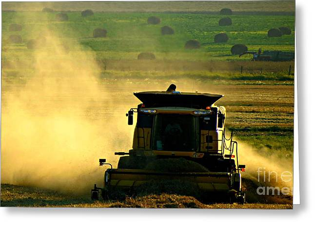Hay Bales Greeting Cards - Combine Greeting Card by Amber Gordon