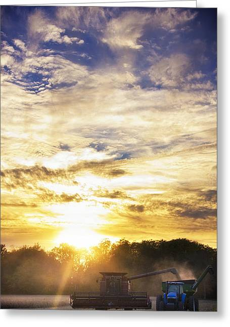 Sunset; Evening; Winter; Snow; Sheep Greeting Cards - Combine at Sunset Greeting Card by Michael Huddleston
