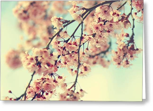 Pink Flower Branch Greeting Cards - Come Away With Me- Cherry Blossoms Greeting Card by Sylvia Cook