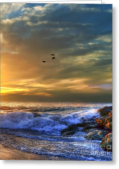 Panoramic Ocean Greeting Cards - Come Fly With Me Greeting Card by Imagevixen Photography