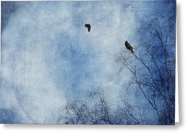 Birch Tree Greeting Cards - Come Fly With Me Greeting Card by Priska Wettstein