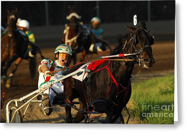 Bob Christopher Greeting Cards - Horse Racing Come On Number 6 Greeting Card by Bob Christopher