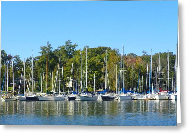 Come Sail Away Greeting Card by Lisa Wooten