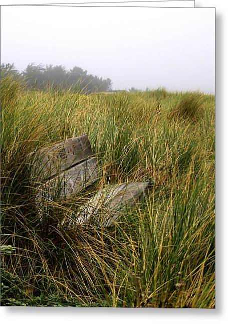Bill Gallagher Photography Greeting Cards - Come Sit and Stay Greeting Card by Bill Gallagher