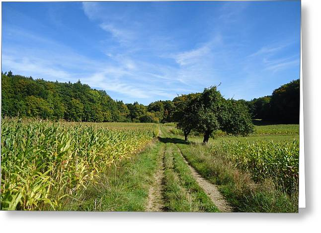 Himmel Greeting Cards - Come walk with me Greeting Card by Rita Haeussler