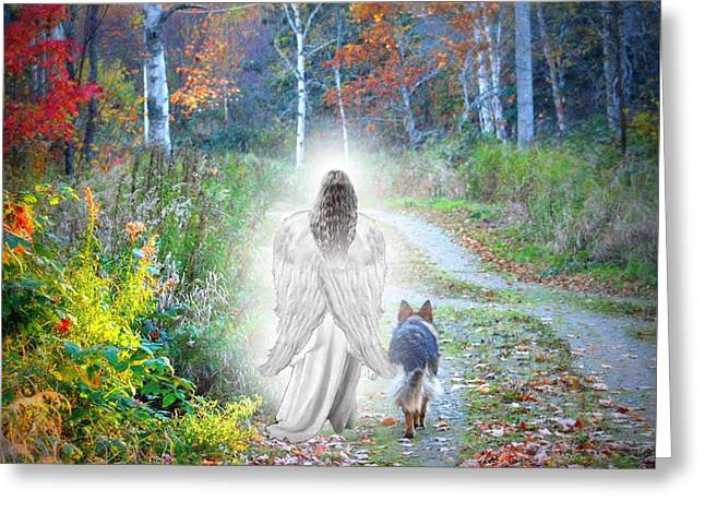Canine Digital Art Greeting Cards - Come Walk With Me Greeting Card by Sue Long