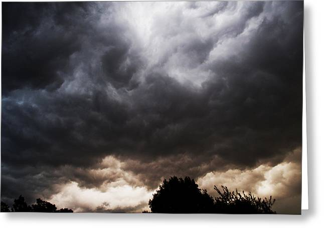 Comes The Storm Greeting Card by Randi Kuhne