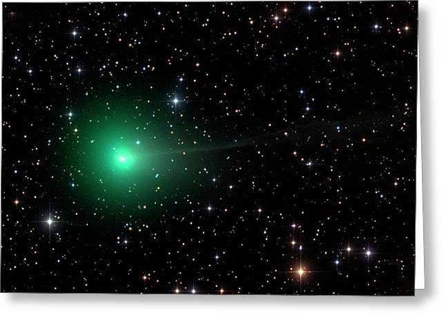 Comet C2013 R1 Greeting Card by Damian Peach