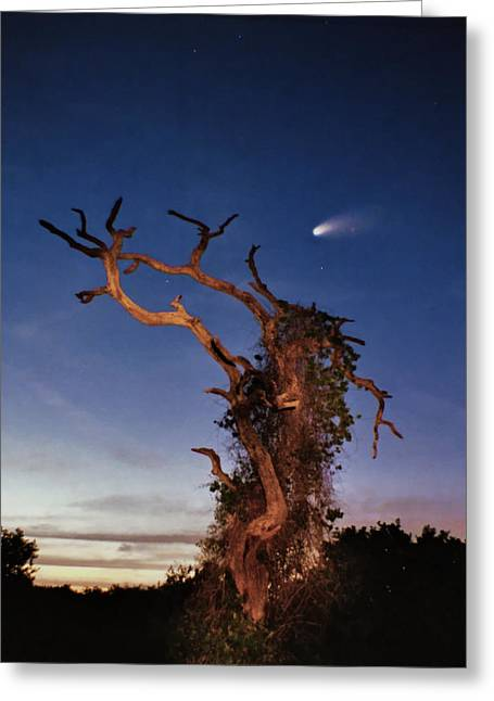 Comet Hale-bopp Photography Greeting Cards - Comet Catcher. Lake Gentry. Greeting Card by Chris  Kusik
