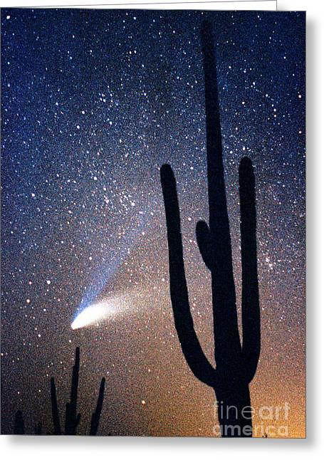 Comet Hale-bopp Photography Greeting Cards - Comet Hale - Bopp With Saguaro Greeting Card by Douglas Taylor