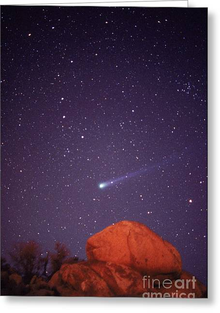 Comet Hyakutake Greeting Card by Jerry Schad
