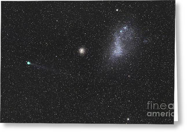 Small Magellanic Cloud Greeting Cards - Comet Lemmon Next To The Small Greeting Card by Luis Argerich