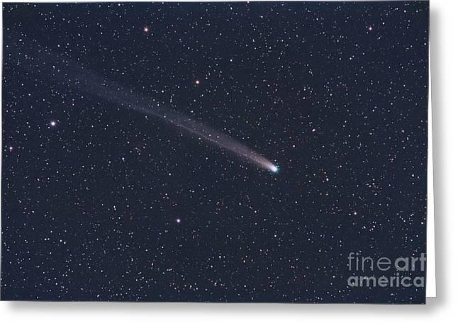 Star Gazing Greeting Cards - Comet Lovejoy, December 2013 Greeting Card by John Chumack