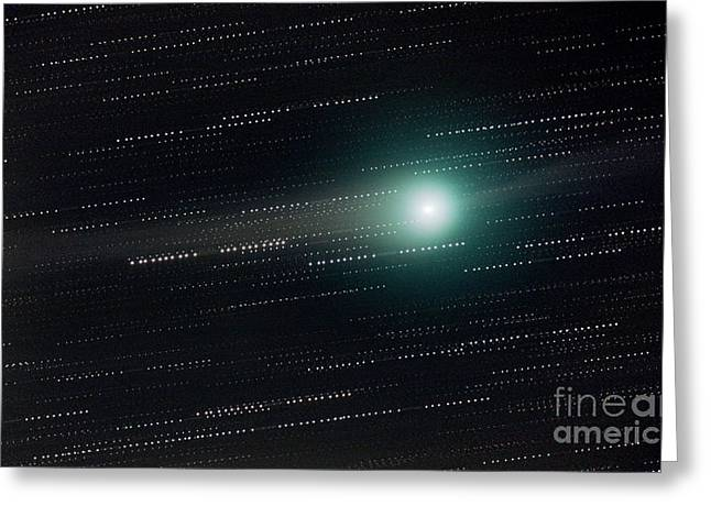 Two Tailed Photographs Greeting Cards - Comet Lulin Greeting Card by John Chumack