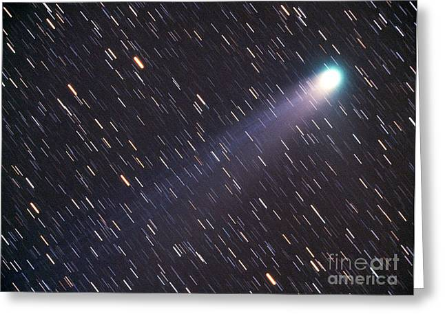 Mccoy Photographs Greeting Cards - Comet Neat C2001 Q4 Greeting Card by Chris Cook