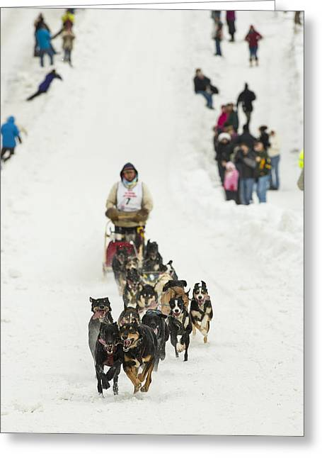 Dog Sled Greeting Cards - Coming Down Cordova Street Greeting Card by Tim Grams