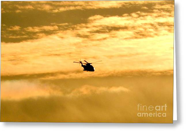 Military Airplanes Greeting Cards - Coming Home Greeting Card by Karen Cook