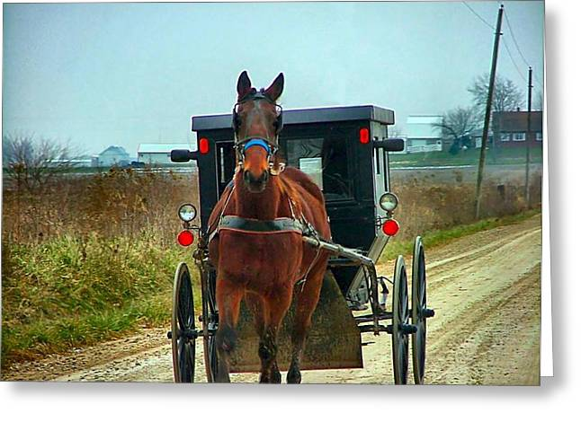 Amish Community Greeting Cards - Coming My Way Greeting Card by Julie Dant