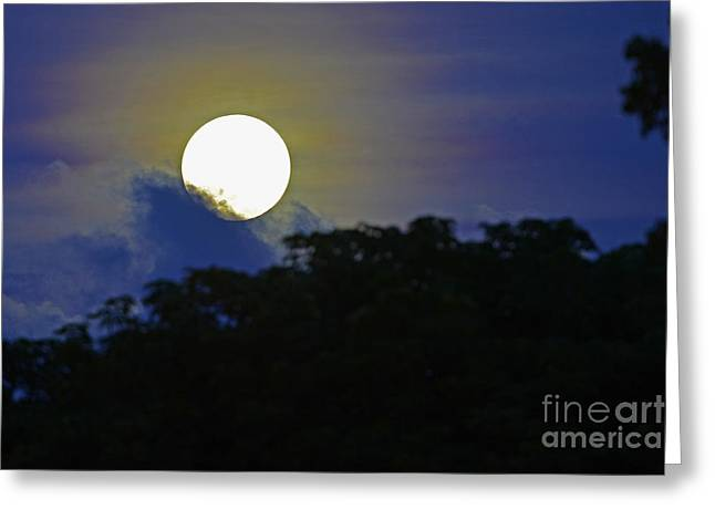 Lunar Base Greeting Cards - Coming or Going Greeting Card by Rick Bravo