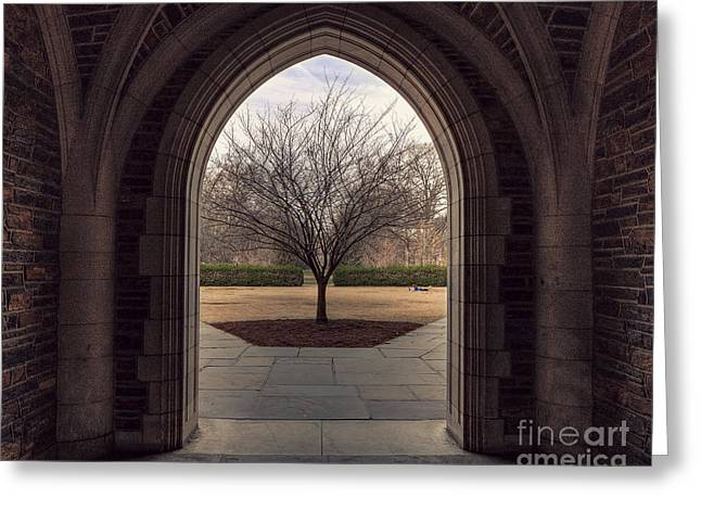 Duke Greeting Cards - Coming Out  Greeting Card by Emily Enz