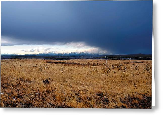 Canadian Foothills Landscape Greeting Cards - Coming Snow Greeting Card by Terry Reynoldson