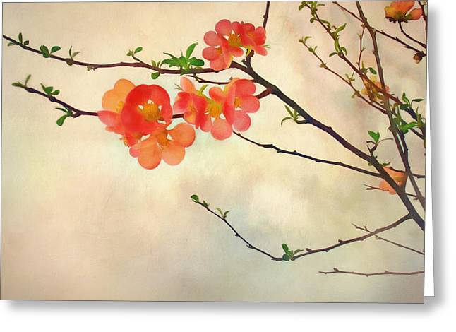 Floral Digital Art Digital Art Greeting Cards - Coming Storm Greeting Card by Bernie  Lee