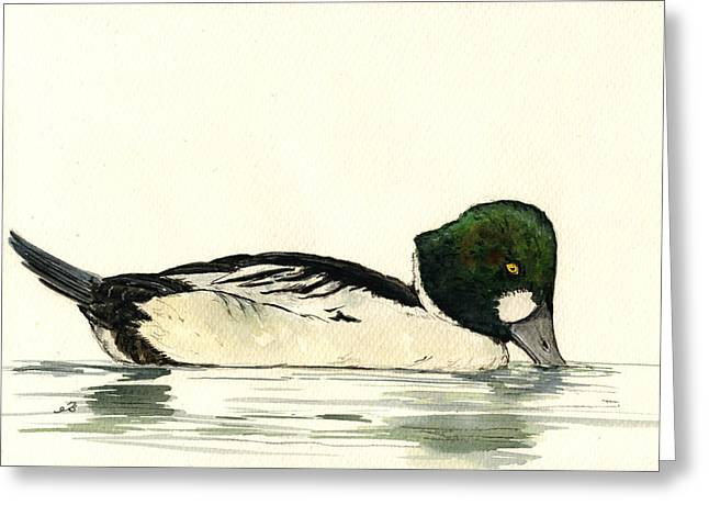 Common Greeting Cards - Common Goldeneye duck Greeting Card by Juan  Bosco