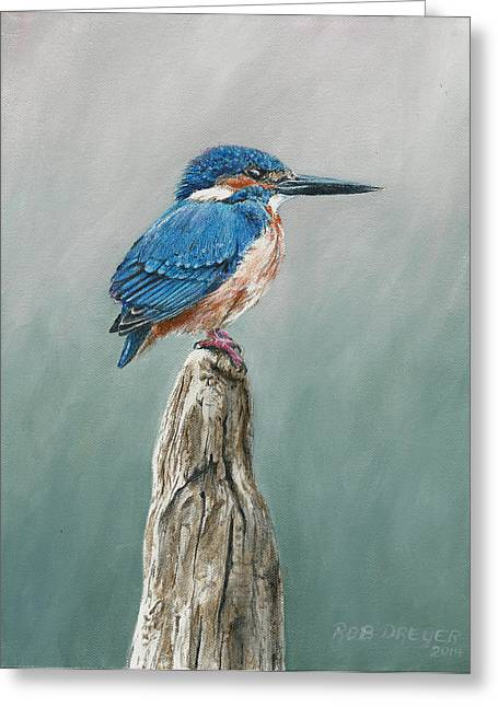Audubon Greeting Cards - Common Kingfisher Greeting Card by Rob Dreyer AFC
