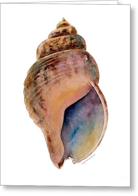 Common Whelk Shell Greeting Card by Amy Kirkpatrick
